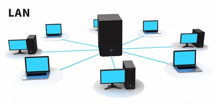 Сеть соединённых между собой компьютеров специальным кабелем называется локальной