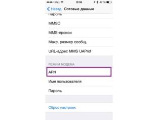 Вид параметров на iPhone