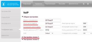 VoIP в настройках роутера