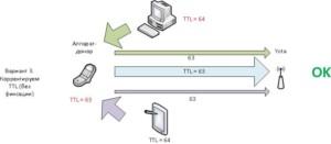 Корректировка TTL